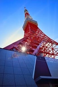 芝公園 東京タワーと太陽の写真素材 [FYI02095521]