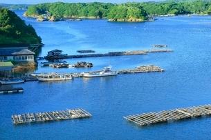 伊勢志摩,英虞湾の真珠養殖用いかだの写真素材 [FYI02095541]