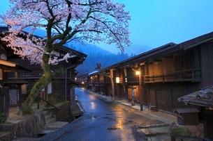 木曽路 妻籠宿とサクラの夕景の写真素材 [FYI02095562]