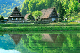 五箇山 新緑の菅沼集落と水田の写真素材 [FYI02095862]