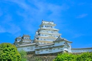 新緑の姫路城の写真素材 [FYI02095872]