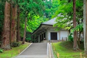 新緑の中尊寺金色堂の写真素材 [FYI02096002]
