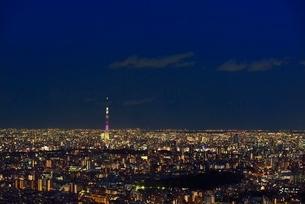 サンシャイン60展望室よりスカイツリーと東京の街並み夜景の写真素材 [FYI02096094]