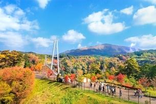 秋の九重夢大吊橋の写真素材 [FYI02096191]