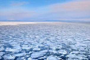 おーろら号よりオホーツク海に蓮葉氷流氷帯と知床の山々の写真素材 [FYI02096196]