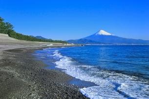 三保の松原から富士山を望むの写真素材 [FYI02096214]