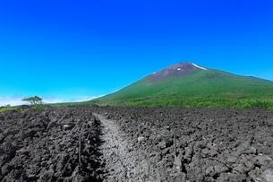 焼走り熔岩流の岩手山と熔岩に道の写真素材 [FYI02096227]