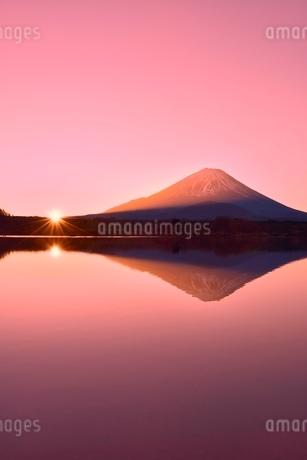 元旦・朝焼けの精進湖と逆さ富士に朝日の写真素材 [FYI02096319]