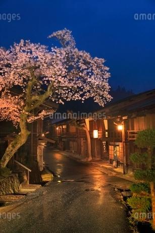 木曽 妻籠宿とサクラの夜景の写真素材 [FYI02096374]