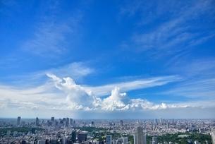 六本木ヒルズより東京の街並みと入道雲 新宿方面望むの写真素材 [FYI02096415]