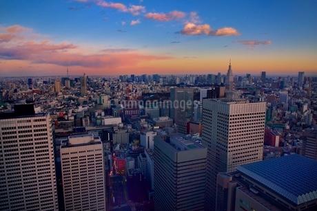 東京都庁展望室より夕焼けの都心ビル群とスカイツリーの写真素材 [FYI02096449]
