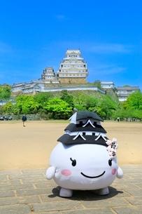 新緑の姫路城の写真素材 [FYI02096460]