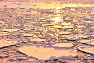 おーろら号より夕照のオホーツク海に蓮葉氷流氷帯の写真素材 [FYI02096575]