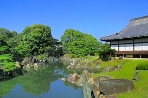 元離宮二条城 二の丸庭園の写真素材 [FYI02096589]