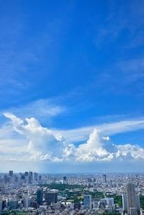 六本木ヒルズより東京の街並みと入道雲 新宿方面望むの写真素材 [FYI02096699]