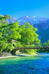 新緑の上高地,河童橋と梓川より穂高連峰の写真素材 [FYI02096736]