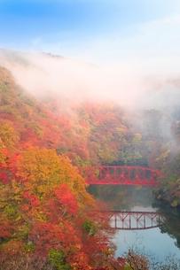 帝釈峡 朝霧かかる紅葉の神龍湖の写真素材 [FYI02096776]