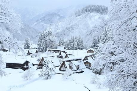 五箇山 雪の相倉合掌造り集落の写真素材 [FYI02096785]