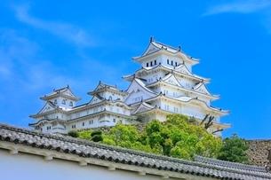新緑の姫路城の写真素材 [FYI02096792]