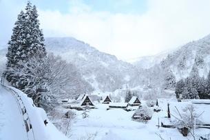 五箇山 雪の菅沼合掌造り集落の写真素材 [FYI02096794]