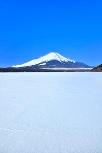 富士山と山中湖の氷結雪原の写真素材 [FYI02096920]