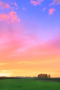 美瑛 新栄の丘と夕焼けの写真素材 [FYI02096939]