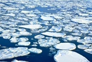 おーろら号よりオホーツク海の蓮葉氷流氷帯の写真素材 [FYI02096941]