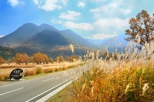 秋のやまなみハイウエイ,長者原と九重連山の写真素材 [FYI02096971]