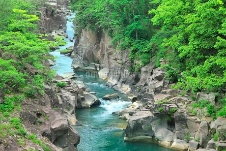 新緑の厳美渓の写真素材 [FYI02096976]