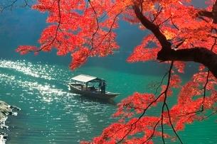 紅葉の嵐山 保津川の屋形船の写真素材 [FYI02097043]