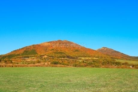 紅葉の蒜山三座の写真素材 [FYI02097085]