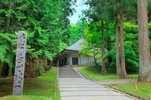 新緑の中尊寺金色堂の写真素材 [FYI02097138]