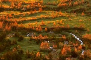渋峠より望む朝日さす紅葉の芳ケ平の写真素材 [FYI02097224]