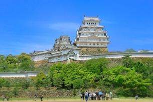 新緑の姫路城の写真素材 [FYI02097267]