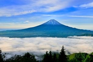 新道峠より富士山と河口湖にかかる雲海の写真素材 [FYI02097296]