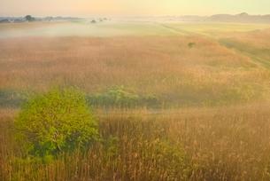 荒川河川敷の霧景色の写真素材 [FYI02097370]