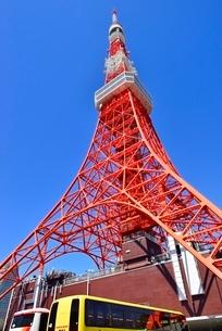 芝公園 東京タワーの写真素材 [FYI02097403]