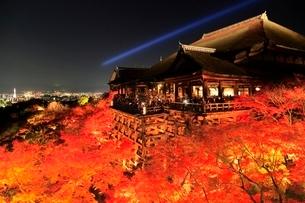 紅葉の清水寺 ライトアップの写真素材 [FYI02097405]