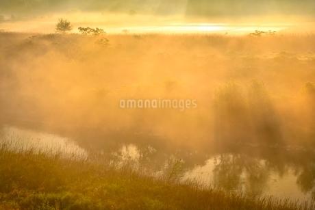 荒川河川敷の霧景色の写真素材 [FYI02097425]