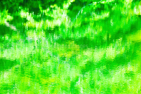 緑の映る水面の写真素材 [FYI02097499]