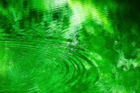 緑の映る水面と波紋の写真素材 [FYI02097549]
