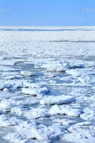 オホーツク海ウトロ沖の流氷原の写真素材 [FYI02097556]