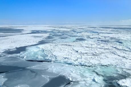 おーろら号よりオホーツク海の流氷原の写真素材 [FYI02097566]