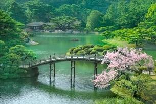 栗林公園の偃月橋に桜と掬月亭の写真素材 [FYI02097646]