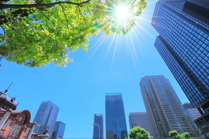 新緑の東京駅と丸の内ビル群 太陽に光芒の写真素材 [FYI02097687]