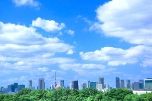 東京タワーとビル群の写真素材 [FYI02097736]