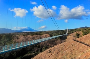 三島スカイウォークと富士山の写真素材 [FYI02097761]