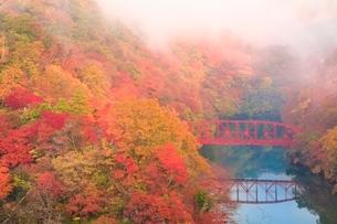 帝釈峡 朝霧かかる紅葉の神龍湖の写真素材 [FYI02097770]