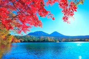オンネトーの紅葉(雌阿寒岳,阿寒富士)の写真素材 [FYI02097772]