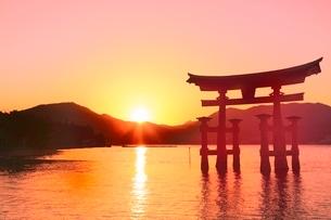 宮島夕景 厳島神社の大鳥居と夕日の写真素材 [FYI02097872]